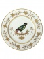 Тарелка обеденная с узором Richard Ginori 1735  –  Общий вид