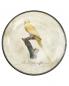 Тарелка настенная с узором Richard Ginori 1735  –  Общий вид